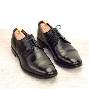 Allen Edmonds LEXINGTON 10.5 D * new AE Shoe Bags